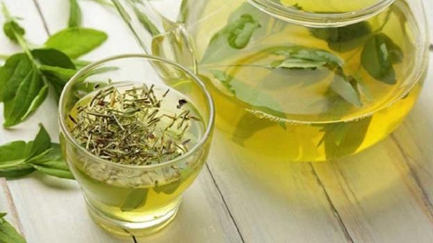 mengecilkan lengan dengan teh hijau